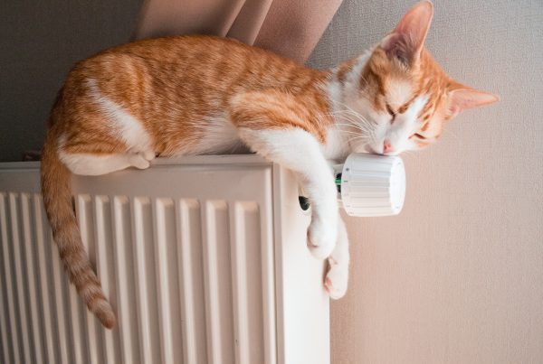 3 ways to save on your home energy bills
